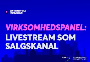 Virksomhedspanel: Livestream som salgskanal